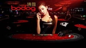 Bodog88 Casino Review