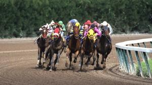 Florida horse racing