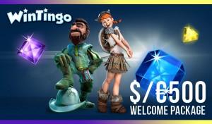 WinTingo Casino Review