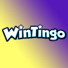 WinTingo Casino Review Small