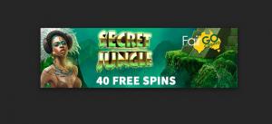 40 free spins at fair go