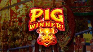 GoldenEuro_pig_winner