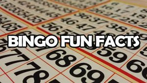 Bingo Fun Facts headline on bingo card