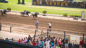 Horse Races with the Audience